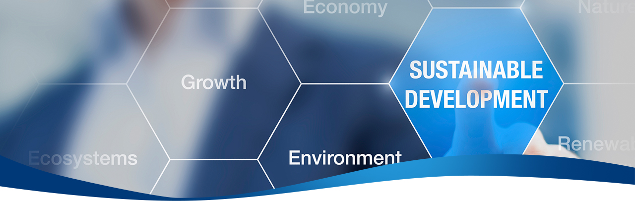 Graphic with the words Ecosystems, Growth, Environment, Economy and Sustainable Development
