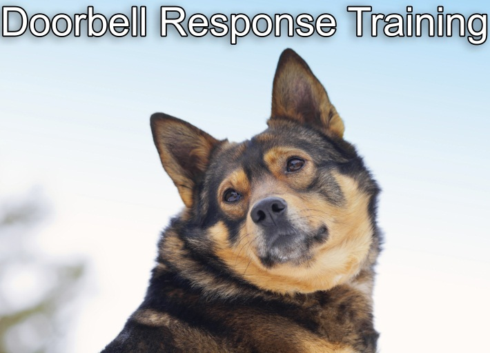 Doorbell Response Training