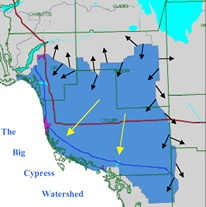 The Big Cypress Watershed