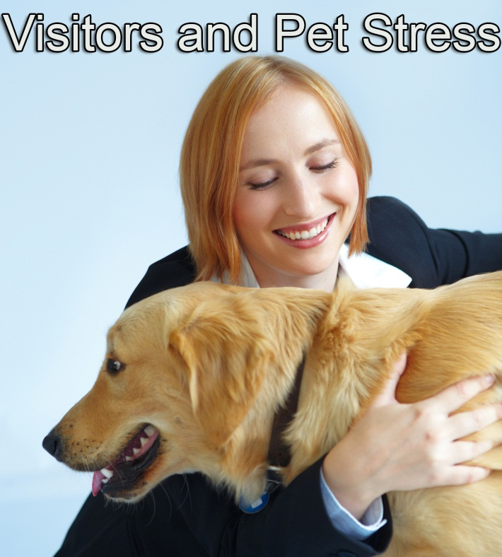 Visitors and pet stress final
