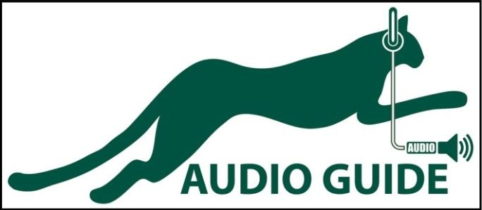 Audio Guide Big