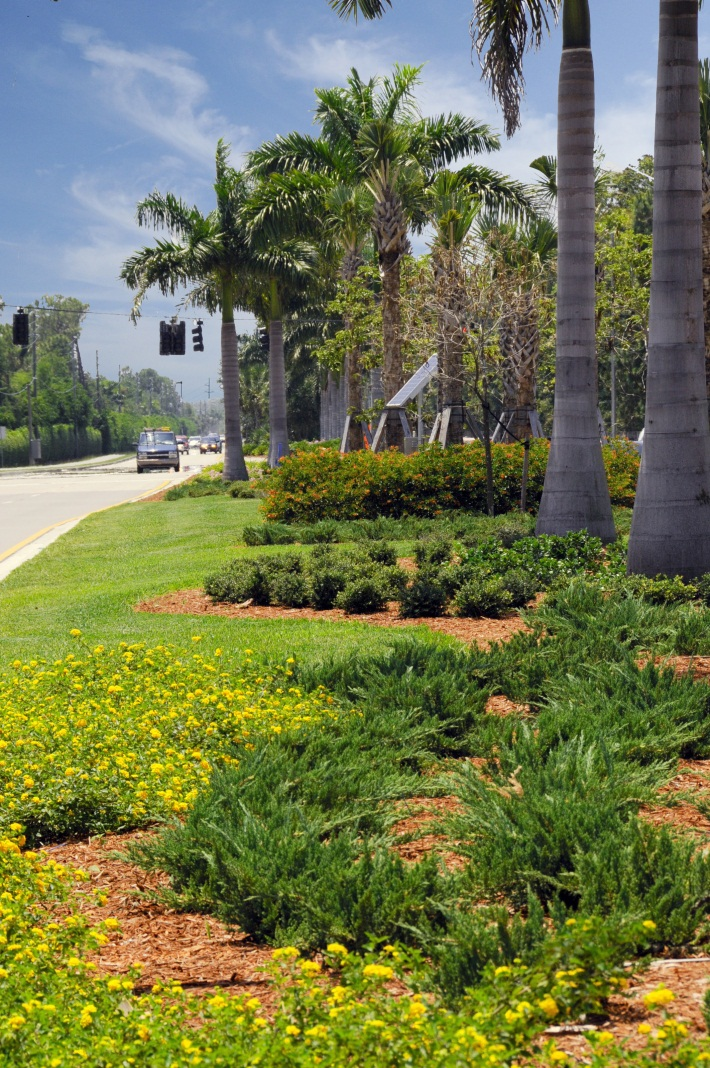 Median with extensive landscaping