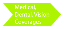 Medical Dental Vision Copverages Green Icon